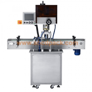 Torque control auto capping machine